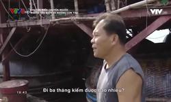 Chuyện biển chuyện người: Người yêu biển và những con tàu