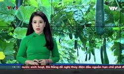 Bản tin 18h VTV8 - 15/12/2019