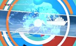 Cùng ngư dân vươn khơi: Hậu cần nghề cá - Điểm tựa cho ngư dân vươn khơi