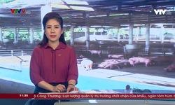 Tin tức 11h30 VTV9 - 22/5/2019