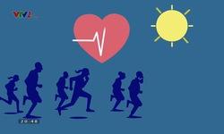 Khỏe thật đơn giản: Phục hồi chấn thương dây chằng
