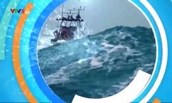 Cùng ngư dân vươn khơi: Tháo gỡ khó khăn trong tiêu thụ hải sản cho ngư dân