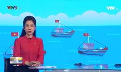 Sáng Phương Nam - 26/8/2019