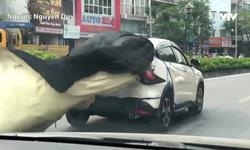 Hốt hoảng với cách che vết móp theo kiểu chẳng giống ai của xe ô tô