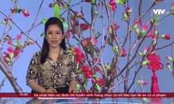 Tin tức 11h30 VTV9 - 22/01/2020