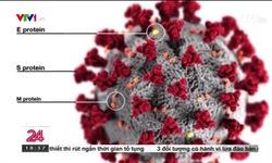 Lý giải số lượng lớn biến thể virus SARS-CoV-2 gây khó khăn ngăn ngừa bệnh