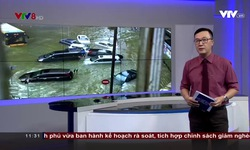 Bản tin 11h30 VTV8 - 24/8/2017