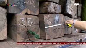Bản tin 16h VTV8 - 20/01/2018