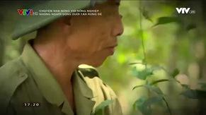 Chuyện nhà nông với nông nghiệp: Những người giữ rừng dẻ