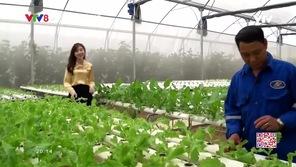 Quyến rũ Việt Nam: Sắc xanh Yên Trung