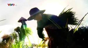Rong ruổi đất phương Nam: Khám phá Ngọa Long Sơn
