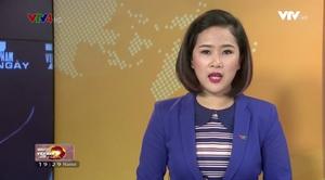 Việt Nam 7 ngày - 19/11/2016