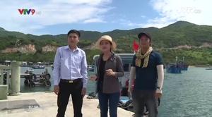 Rong ruổi đất phương Nam: Khám phá vịnh Vĩnh Hy