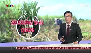 Bản tin 18h VTV8 - 24/4/2018