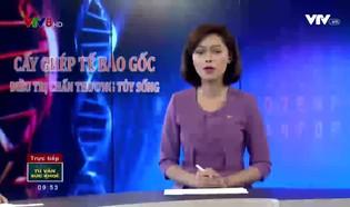 Tư vấn sức khỏe: Cấy ghép tế bào gốc điều trị chấn thương tủy sống