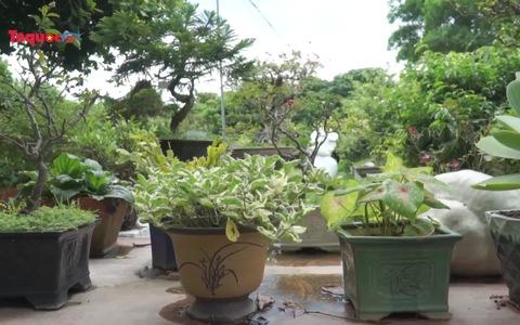Check in ''mỏi tay'' khu vườn thiên nhiên với hàng ngàn loài thực vật