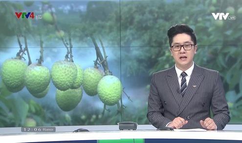 Bản tin tiếng Việt 12h VTV4 - 26/5/2019