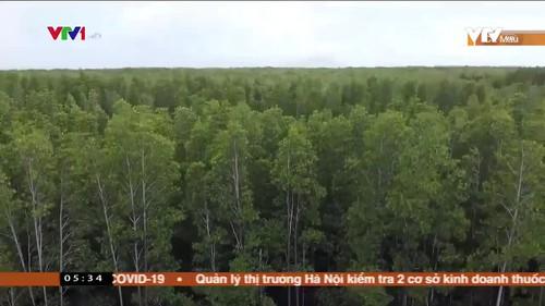 Tình trạng xâm nhập trái phép Vườn quốc gia Mũi Cà Mau