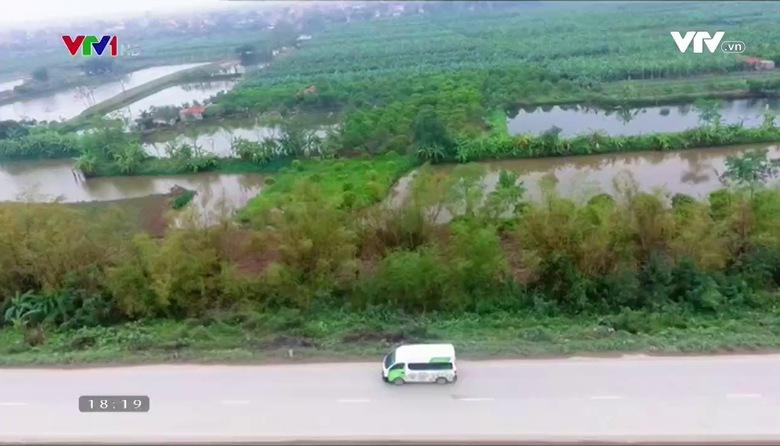 Nông nghiệp sạch: Chuối Hưng Yên sản phẩm nông nghiệp tỉnh Hưng Yên