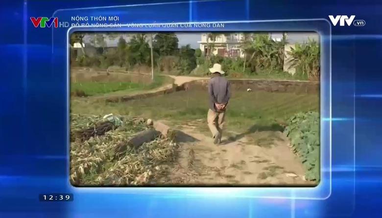 Nông thôn mới: Đổ bỏ nông sản - Vòng luẩn quẩn của nông dân