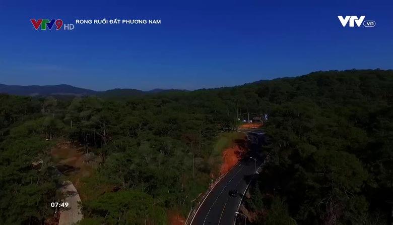 Rong ruổi đất phương Nam: Hồ Đại Ninh
