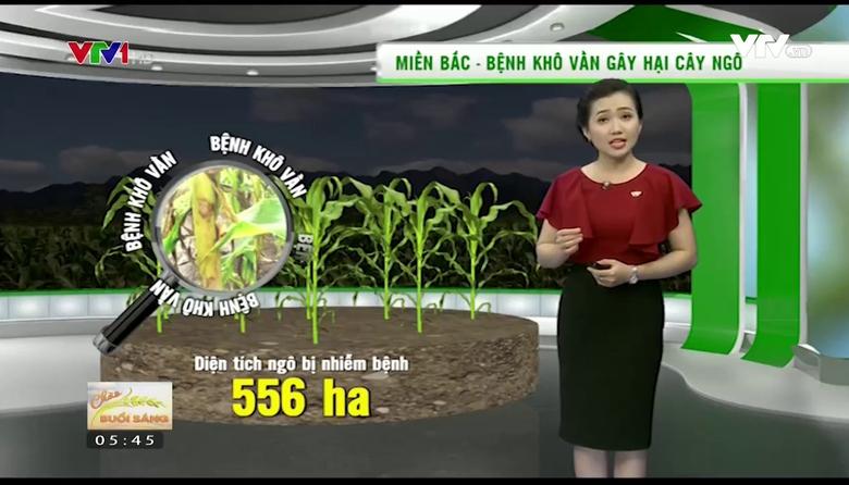 Bản tin thời tiết nông vụ - 25/5/2017