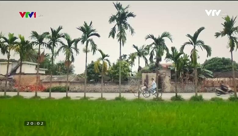 S - Việt Nam: Khám phá xứ cau Yên Đức