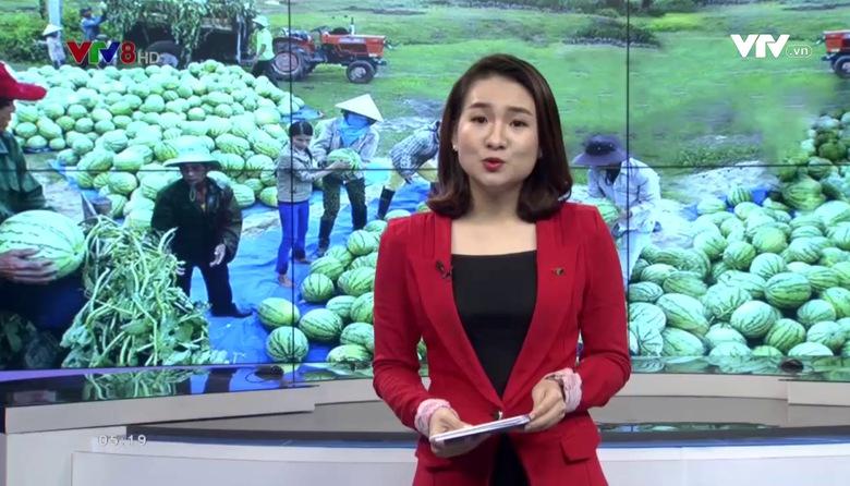 Kết nối miền Trung - 31/5/2017