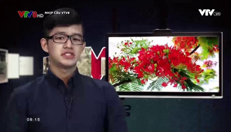 Nhịp cầu VTV8 - 04/6/2017