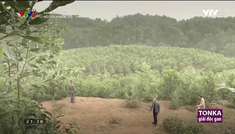 Phim truyện: Người phán xử - Tập 24