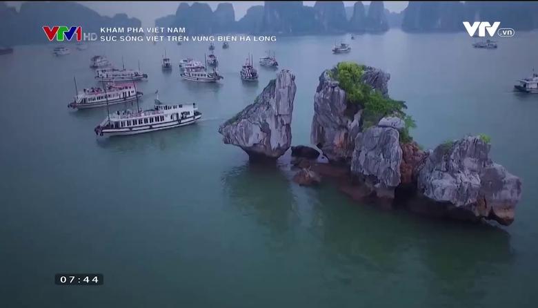 Khám phá Việt Nam: Sức sống Việt trên vùng biển Hạ Long