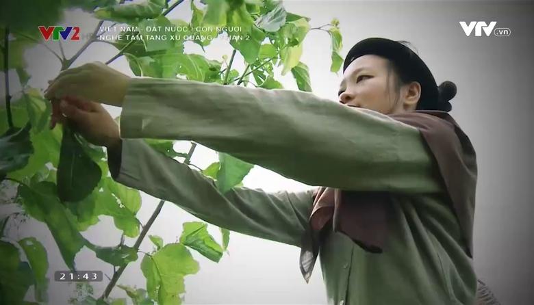Việt Nam - Đất nước - Con người: Nghề tằm tang xứ Quảng - Phần 2