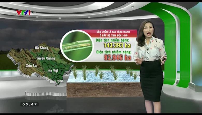 Bản tin thời tiết nông vụ - 22/9/2017