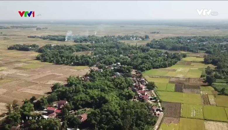 Nông nghiệp sạch: Trứng gà sản phẩm nông nghiệp tỉnh Quảng Nam