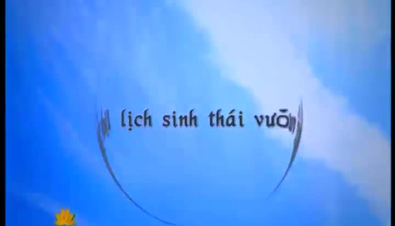 S - Việt Nam - 29/8/2014