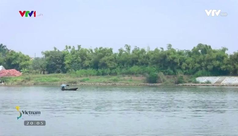 S - Việt Nam: Làng hoa chuyên canh Mỹ Tân