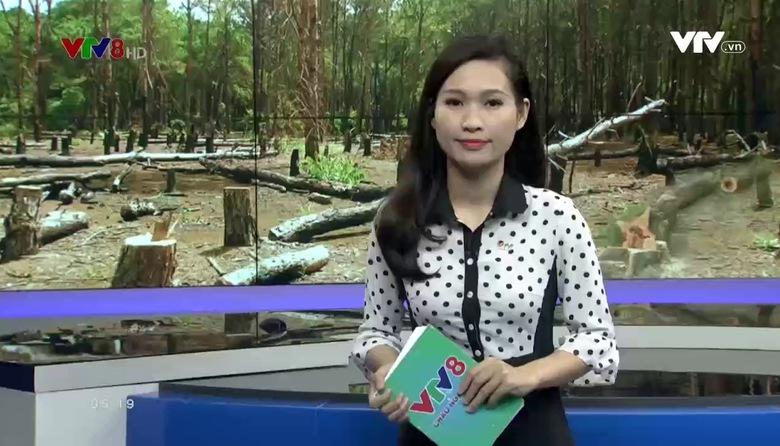 Kết nối miền Trung - 21/3/2017