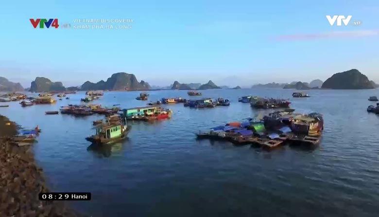 Vietnam Discovery: Khám phá Hạ Long