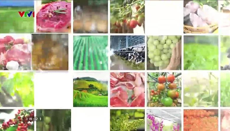 Nông nghiệp sạch: Chôm chôm Java sản phẩm nông nghiệp tỉnh Vĩnh Long