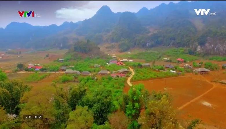 S - Việt Nam: Sắc hoa ban gửi gắm trong ẩm thực Tây Bắc