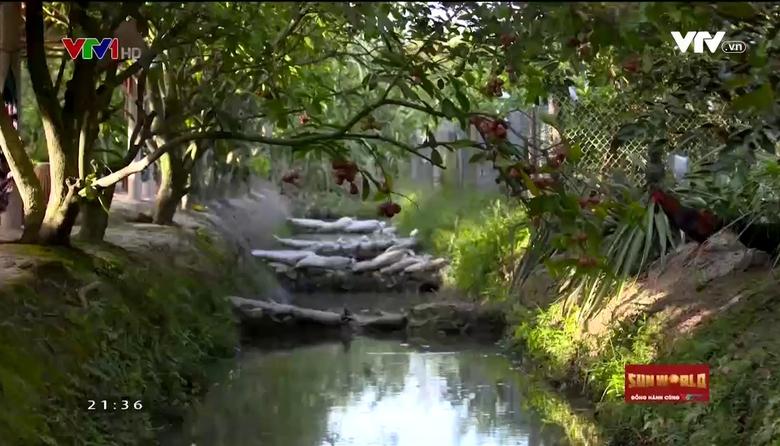 VTVTrip - Du lịch cùng VTV: Vĩnh Long - Về với bình yên sông nước