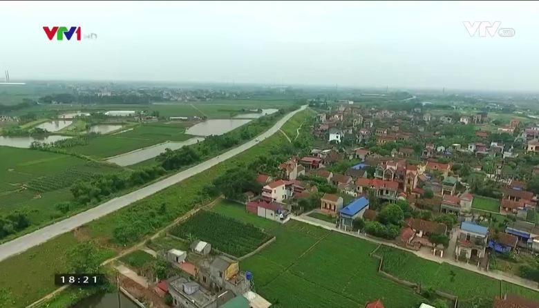 Nông nghiệp sạch: Tinh bột nghệ sản phẩm nông nghiệp tỉnh Hưng Yên