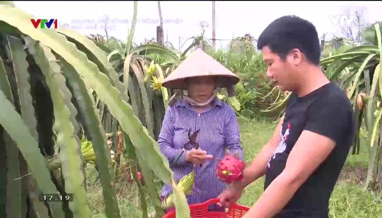 Chuyện nhà nông với nông nghiệp: Mùa quả ngọt