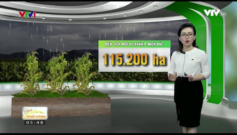 Bản tin thời tiết nông vụ - 25/6/2017