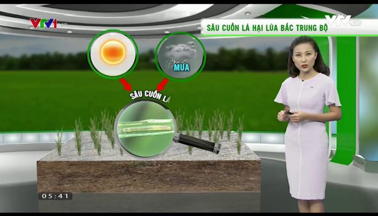Bản tin thời tiết nông vụ - 27/6/2017