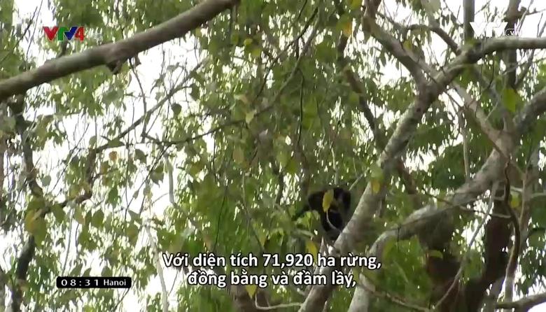 Vietnam Discovery: Ấn tượng Đồng Nai - Tập 2