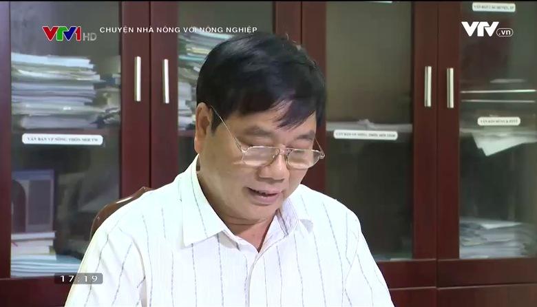 Chuyện nhà nông với nông nghiệp: Nắng hạn và cách ứng phó của ngành nông nghiệp Bắc Giang
