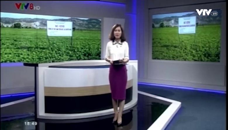 Kết nối miền Trung - 14/8/2017