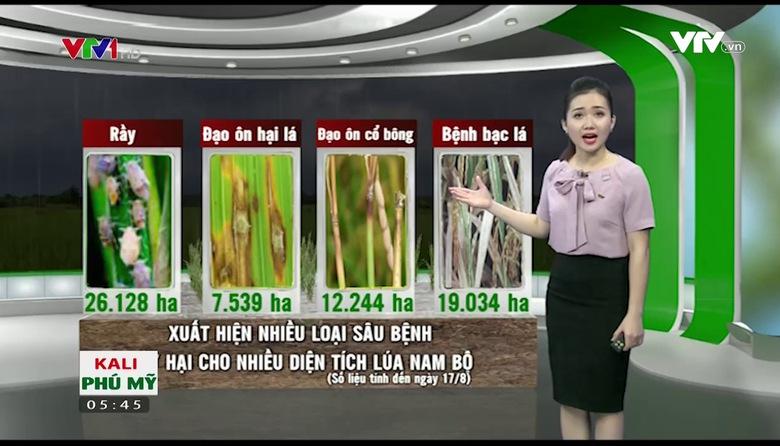 Bản tin thời tiết nông vụ - 21/8/2017