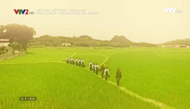 Việt Nam - Đất nước - Con người: Cồng chiêng - diện mạo văn hóa Mường